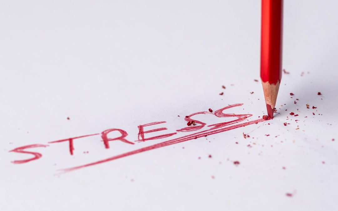 Stress Awareness and Resiliency